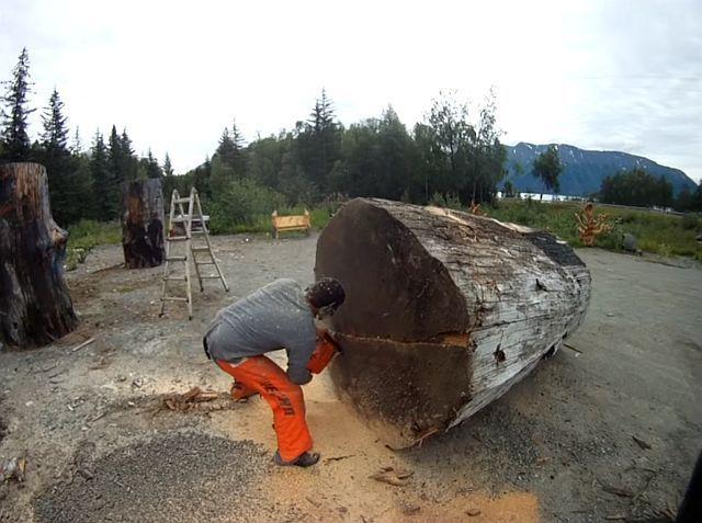 A luat o drujbă imensă și a tăiat în două acest buștean uriaș. Mulți nu înțelegeau ce face, însă când au văzut ce a scos din interiorul lui au rămas blocați…
