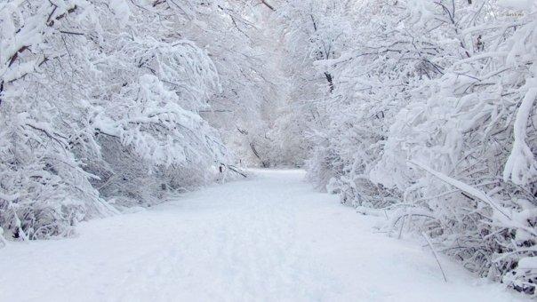 Temperaturile scad dramatic! Meteorologii au anuntat cand vor avea loc primele ninsori in Romania